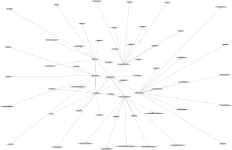 spider-graph-2014